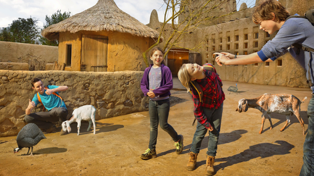 WILDLANDS Adventure Zoo Emmen- Dogondorp